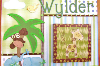 Jungle Baby Shadow Box