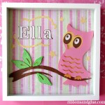 Owl Shadow Box
