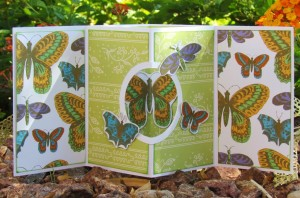Butterfly Window Card