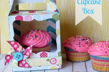 Every Day Cupcake Box made with @silhouetteamerica