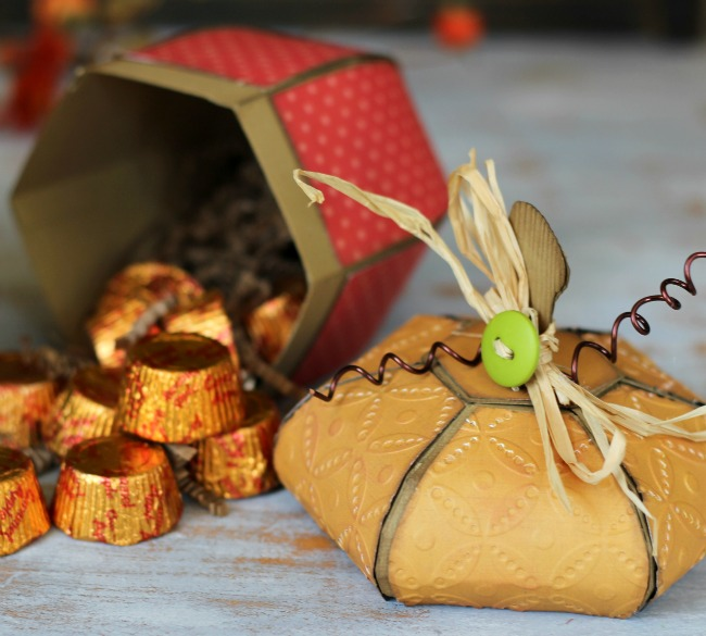 Fall Acorn Boxes cut with Silhouette and SVG file
