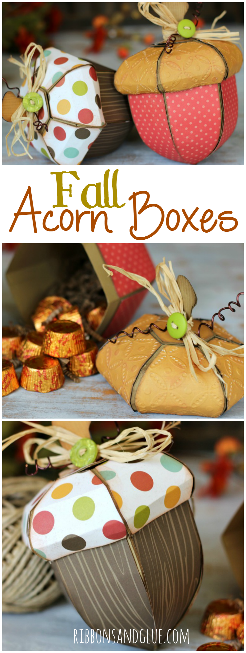 Fall Acorn Boxes cut with Silhouette and SVG cut file perfect to fill up with Fall treats or use in your Fall home decor.
