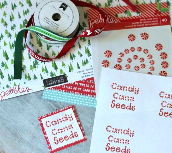 candy-cane-seed-printable