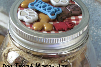 Easy DIY Dog Treat Mason made with Dog Buttons! So simple and cute for those furry friends!