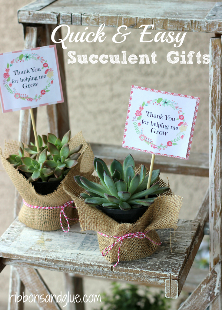 Easy Succulent Gift Idea with a FREE printable perfect for Mom's and Teacher's.
