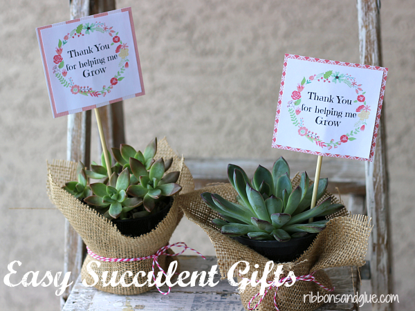 Easy Succulent Gift Idea with  FREE printable perfect for Mom's and Teacher's.