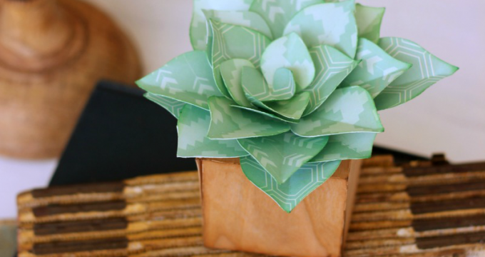 Pretty Paper Succulents
