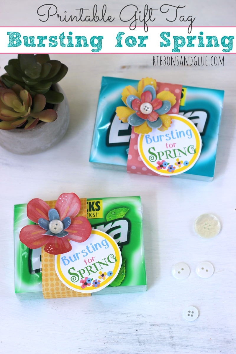 Printable Tag, Just attach printable tag on to a pack of Extra® gum and embellish with flowers! Simple Springtime party favor. #GIVEEXTRAGETEXTRA, #Kroger