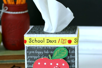 Classroom Tissue Box for the Teacher's Desk